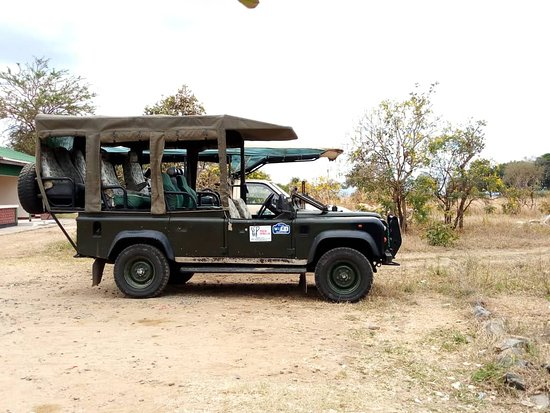 Mikumi National Park: A remarkable safari for you is our core mission