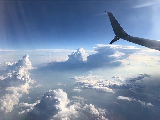 Homerville, GA: Flight from ATL to LAX.