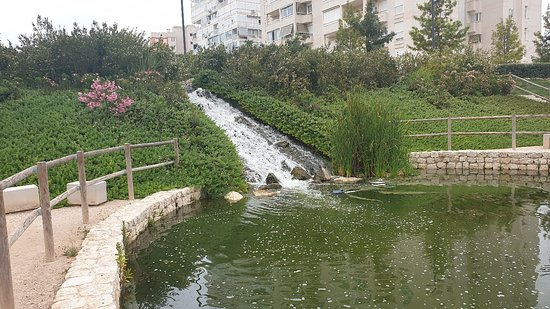 Parque La Marjal