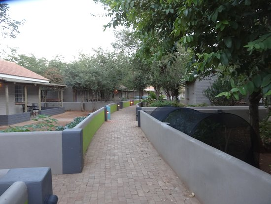 Walkway between rooms and gardens at Damara Mopane Lodge