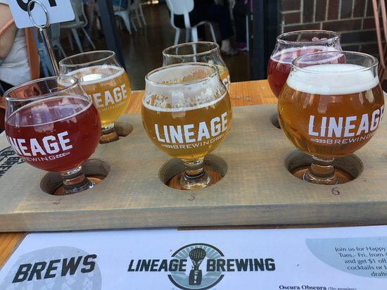 Brew line up