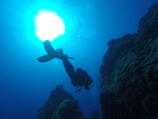 Ios, Yunanistan: Meltemi Dive Centre
