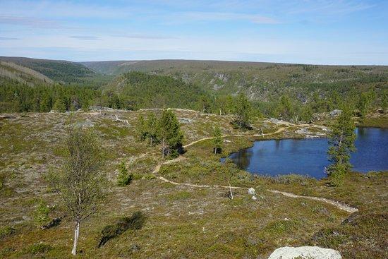 Kevon Luonnonpuisto Utsjoki Suomi Arvostelut Tripadvisor