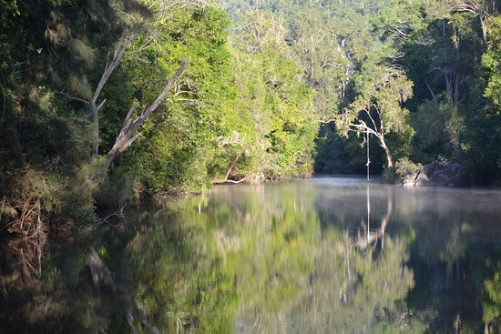 Gympie Region, ออสเตรเลีย: Yabba Creek runs alongside the campgrounds and is a short walk down from the campgrounds.