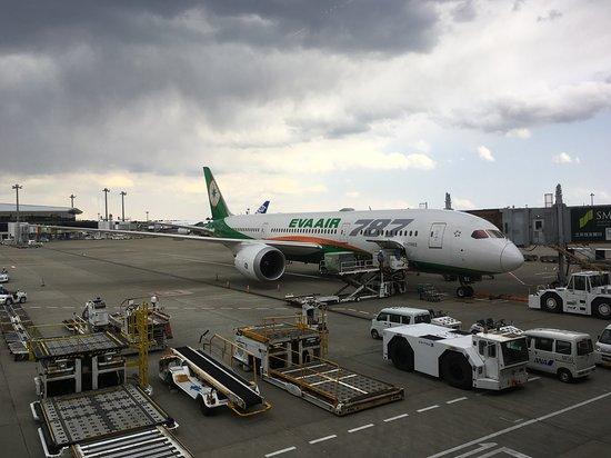 EVA Air: B787:東京成田~台北桃園