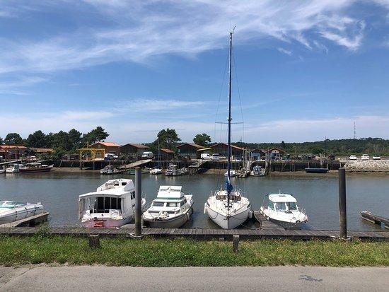 Fous De Bassin Picture