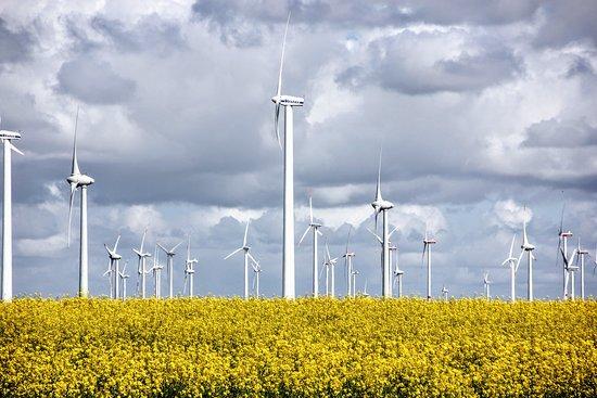 Slesvig-Holsten, Tyskland: Windkraft in Schleswig Holstein