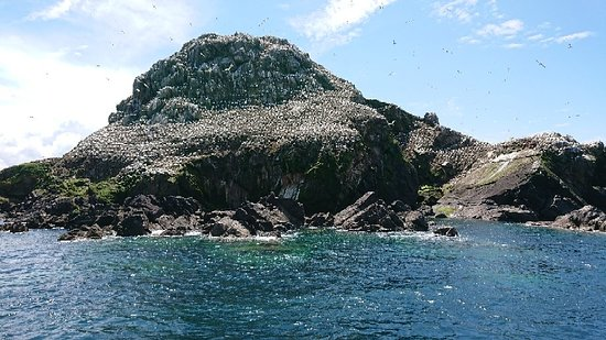 Réserve Naturelle des Sept Îles