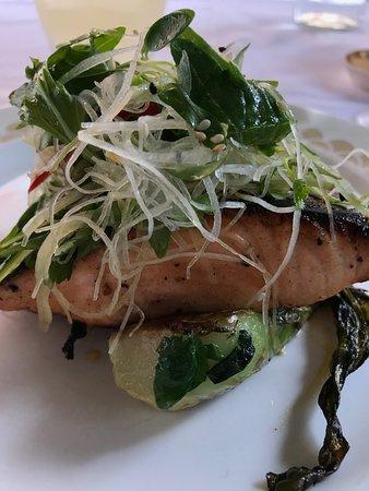 "miso salmon with ""pak choi"""