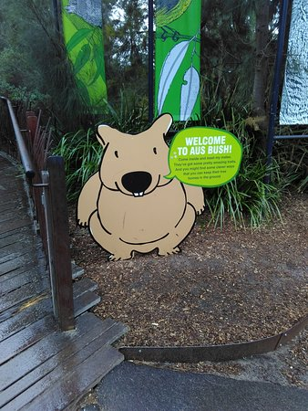 Melbourne Zoo General Entry Ticket: Entry to the Australian Bush