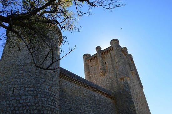 Torrelobaton, Spanyolország: Castillo desde fuera