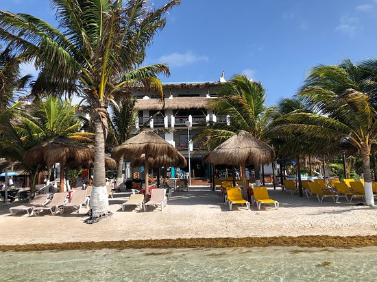 Jaime's at the blue reef: The hotel, bar and beach front