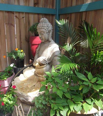 Сент-Огустин, Флорида: Entering our North Courtyard