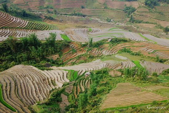Vinh Yen, Vietname: On the way trek trip by cinnamon tours.