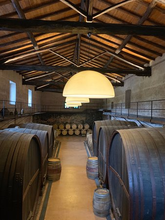 Secret Italia Tours - Small Group Tours & Private Excursions: Never a shortage of wine!
