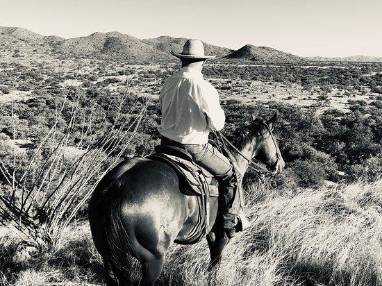Sasabe, AZ: Ross Knox