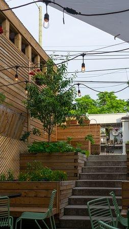Stairs at backyard terrasse
