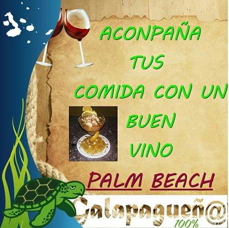 Frases Palm Beach