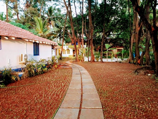 Dhuni Resorts: Pathways in the property