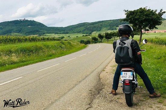 location moto électrique