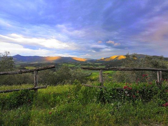 Agriturismo La Mirandola: Che bella la natura!!!
