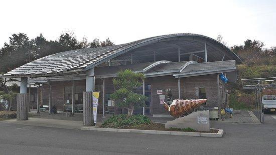 Nagi Bikaria Museum