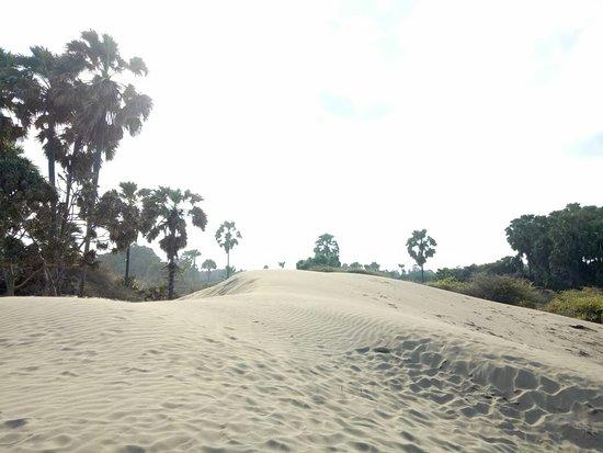 West Timor Foto