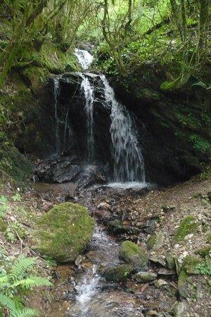 ruisseau avec cascade en découvrant les sentiers.