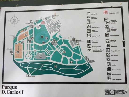 O Parque Dom Carlos I fica bem no centro da cidade de Figueira da Foz e é um excelente local para se passear, descansar e refletir num amplo espaço arborizado e muito bem cuidado e um lago onde podemos aprecias diversas espécies de aves e animais.