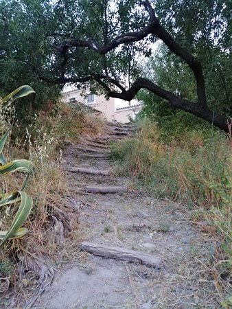 One of the many paths leading from the house