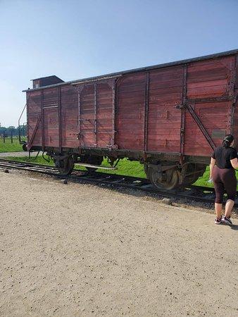 Full-Day Tour to Auschwitz-Birkenau and Wieliczka Salt Mine from Krakow: Auschwitz - 2