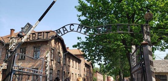 Full-Day Tour to Auschwitz-Birkenau and Wieliczka Salt Mine from Krakow: Auschwitz - 1
