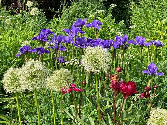 Bolfracks Garden