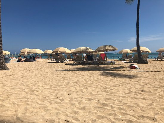 The beach at the Village.  Those umbrellas and chairs are $65 for the day to rent.