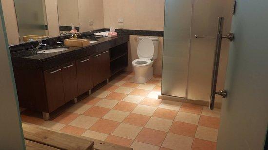 Hualien BV Hotel: 雙洗手台,浴室空間大