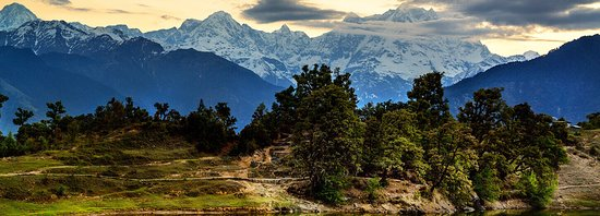 Ukhimath, الهند: Chopta valley is a paradise for trekkers and nature-lovers.Plan a trek and explore the hidden adventures with several species of beautiful Himalayan birds and flowers.  Book online at:www.holidayparkchopta.com 🏂🎿🗻 . . . #nature 🌿🌿 #travel #campinginchopta #hiking #adventure #outdoors #stayinchopta #outdoor #photography #camp #explore #snow 🗻 #snowypeaks #mountains #offroad #instagood #love #trekking #wanderlust #landscape #photooftheday #naturephotography #sunset #roadtrip #camper #sky #na