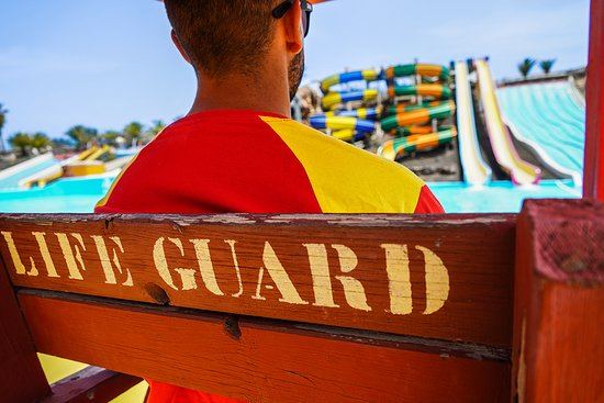 A team of 13 lifeguards, and a coordinator who is always available and focused on what happens in the water.