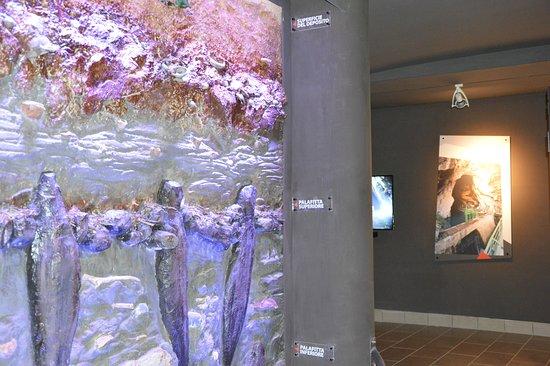 Museo Speleo-Archeologico