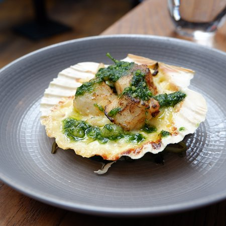 Oven baked Brixham scallops, potato gratin, truffled nut pesto