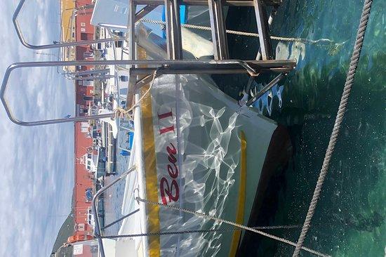 Noleggio Barche Arcobaleno