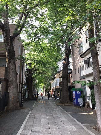Kishimojindaimon Keyakinamiki