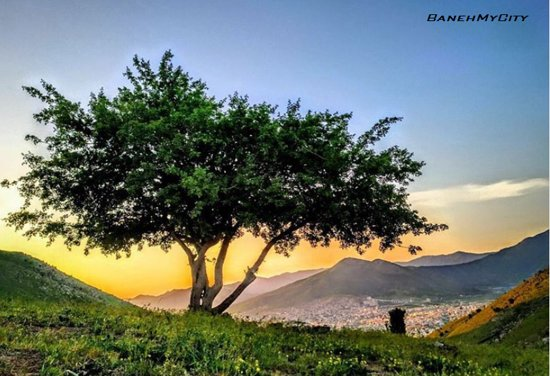 Who looses today, won't find tomorrow There is nothing important as today-----iran.kurdistan.baneh my city