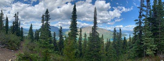 Taken from Nares View Mountain biking trail.