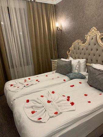 Clean, tidy, elegant room