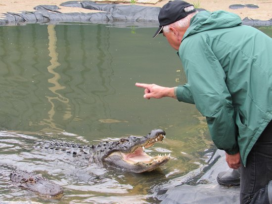 Critchlow Alligator Sanctuary: David (right) and Tom (left).