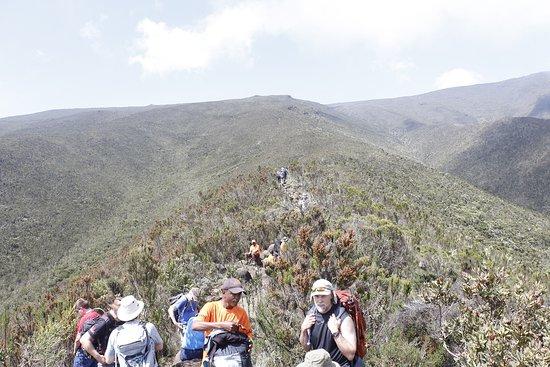 Climb Kilimanjaro with fun