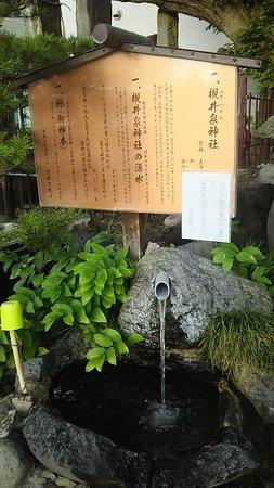 Tsukiiizumi Shrine's Spring
