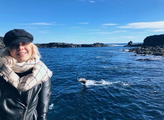 Фотография Phillip Island Whale Watching Tour