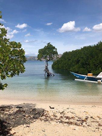 Лабуан-Баджо, Индонезия: Beautiful Labuan Bajo and Komodo