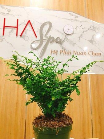Haspa - He Phai Nuan Chan